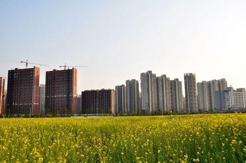 盛毅:城镇化5大热点板块蓉商不应错失良机