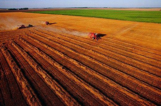 194个现代农业项目发布(项目包)
