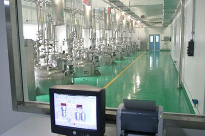 广安市岳池城南工业园医药项目