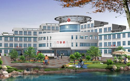 攀枝花市花城新区医院建设项目