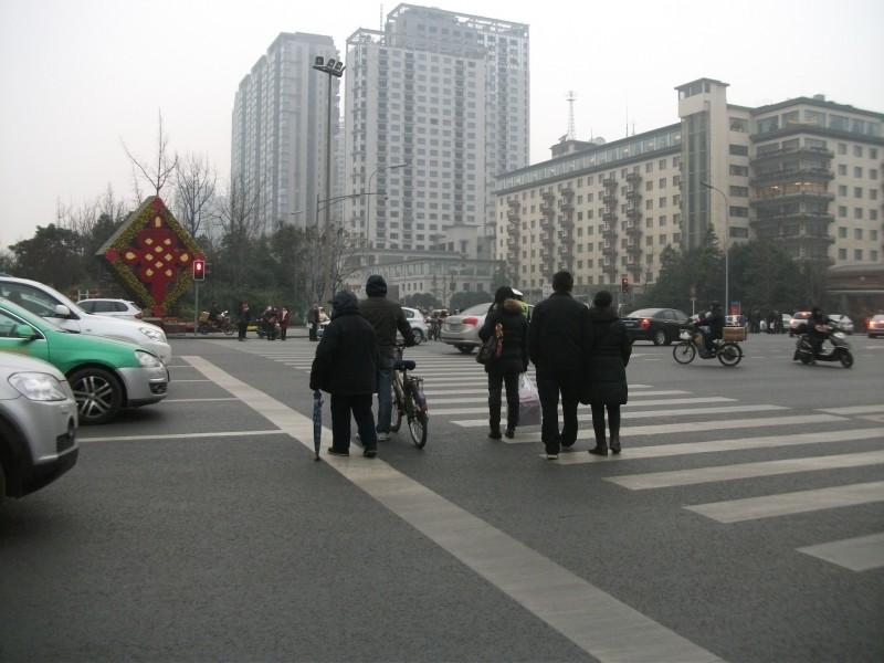 锦江区滨江中路
