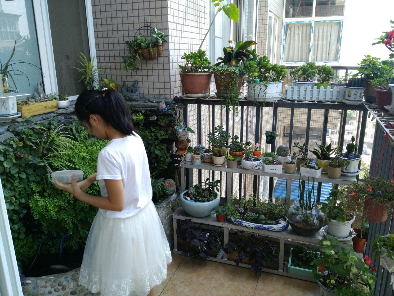 """一位母亲的""""来信"""":我的花园阳台我的梦"""