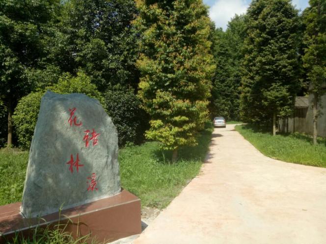 花语林溪:辟一方天地,安一处悠闲