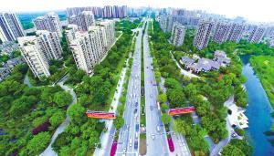 未来3年,温江要建成351公里绿道、460公里慢行系统!