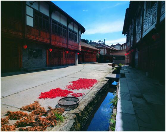 温江约您,10大最美花园乡村(院落)新鲜出炉!