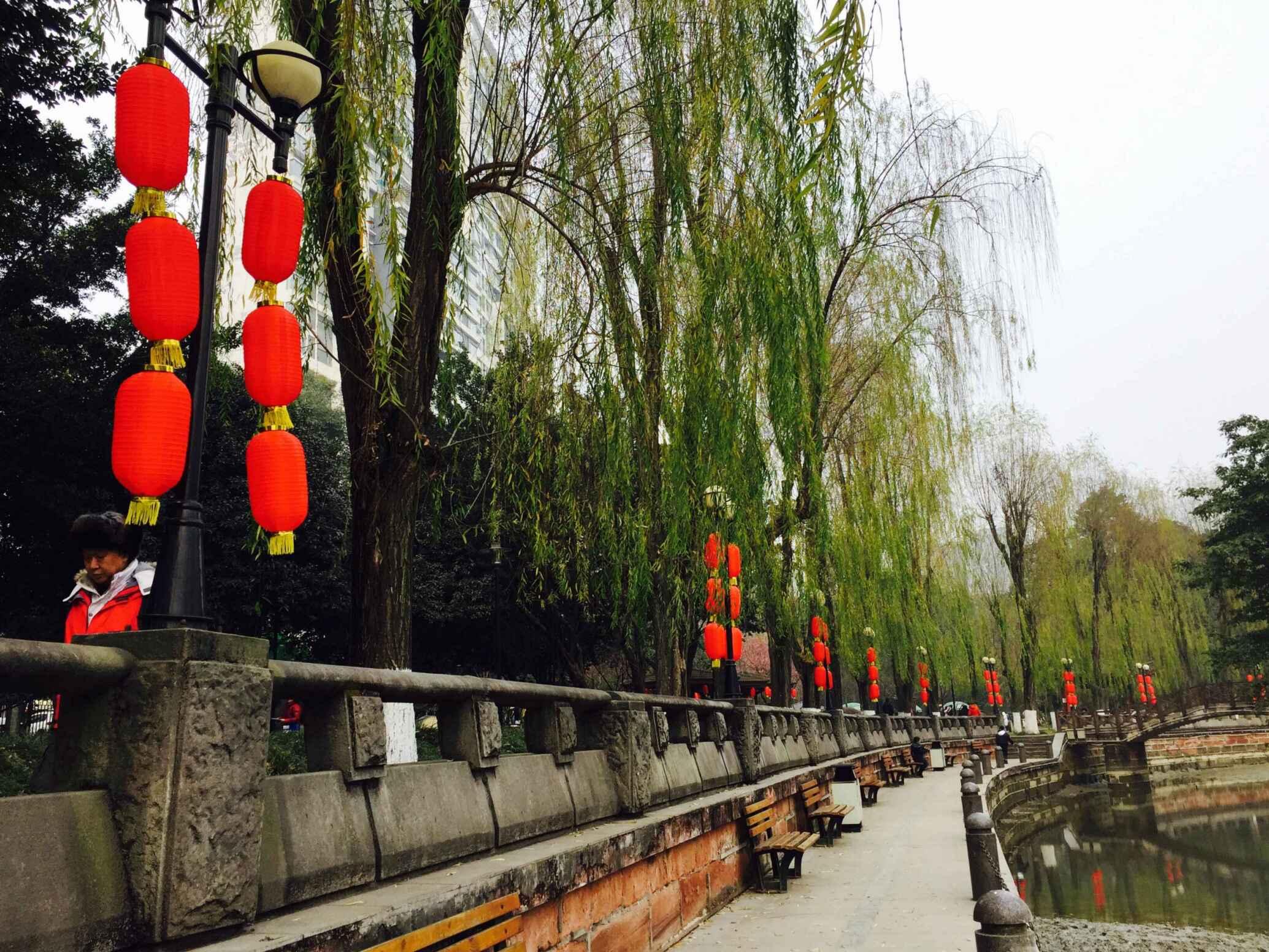 大红灯笼挂起来 温江年味愈渐浓