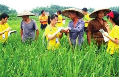 中国新农民,年薪40万